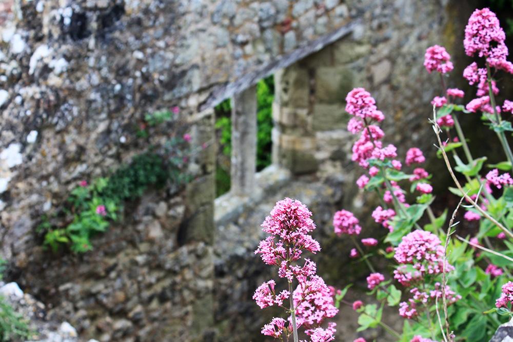 Isle of Wight Carisbrooke Castle 7