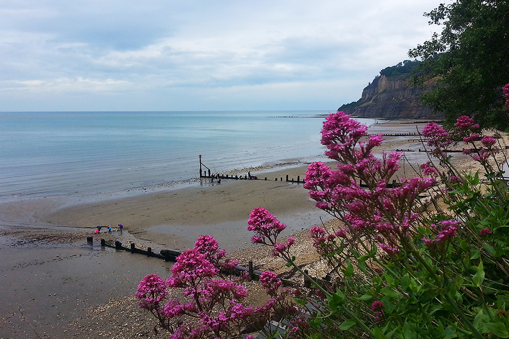 Isle of Wight Shanklin Chine 4