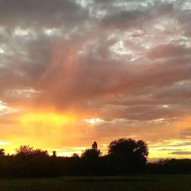 Golden Hour #endlichherbst